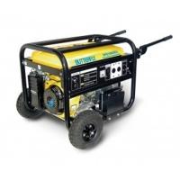 Butterfly Petrol Generator SPG 3000E2