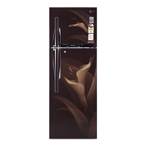 LG Amber Luxe No-Frost Refrigerator – 360L