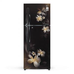 LG Hazzel Plumeria No-Frost Refrigerator 260L