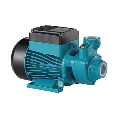 RFL Gold Water Pump WP Dom RGm 60 1