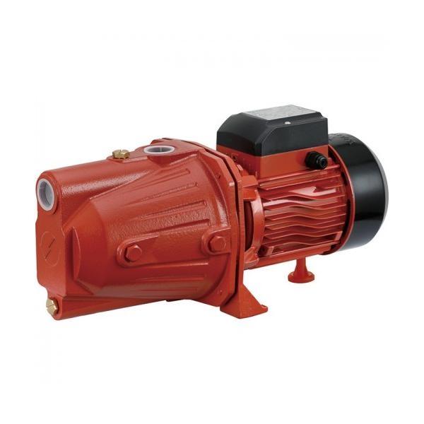 Walton Domestic Pump WWP-WT10J