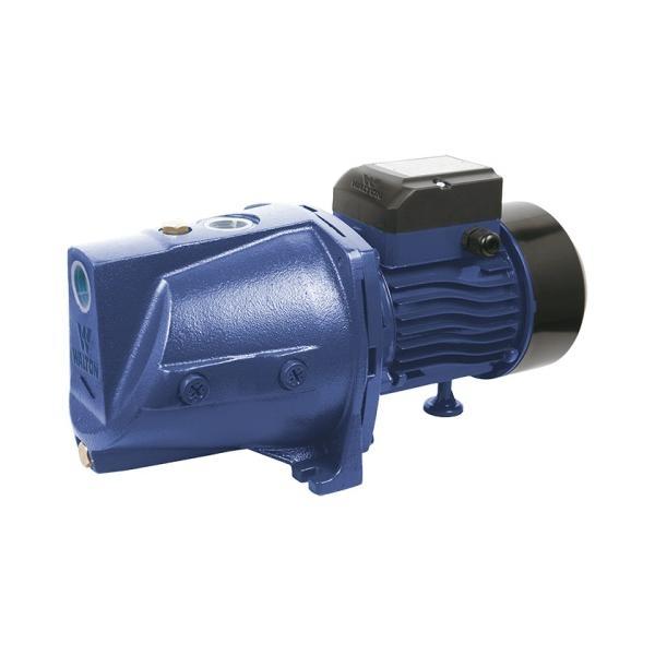 Walton Water Pump WWP-HY10J
